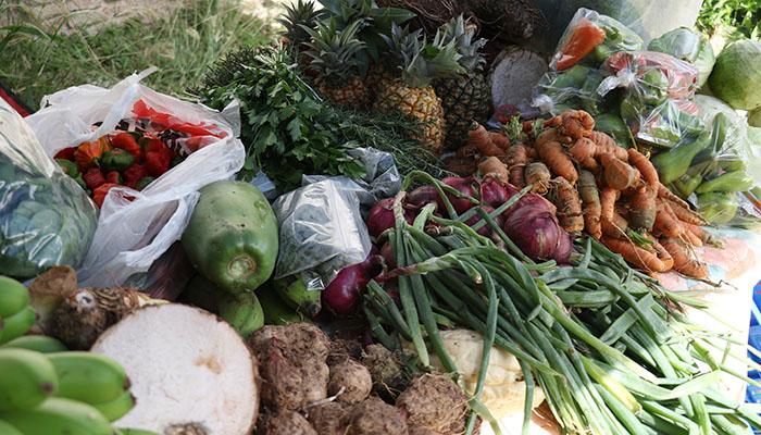 La venta de frutas y viandas producidas por manos puertorriqueñas ha tomado auge con este programa.