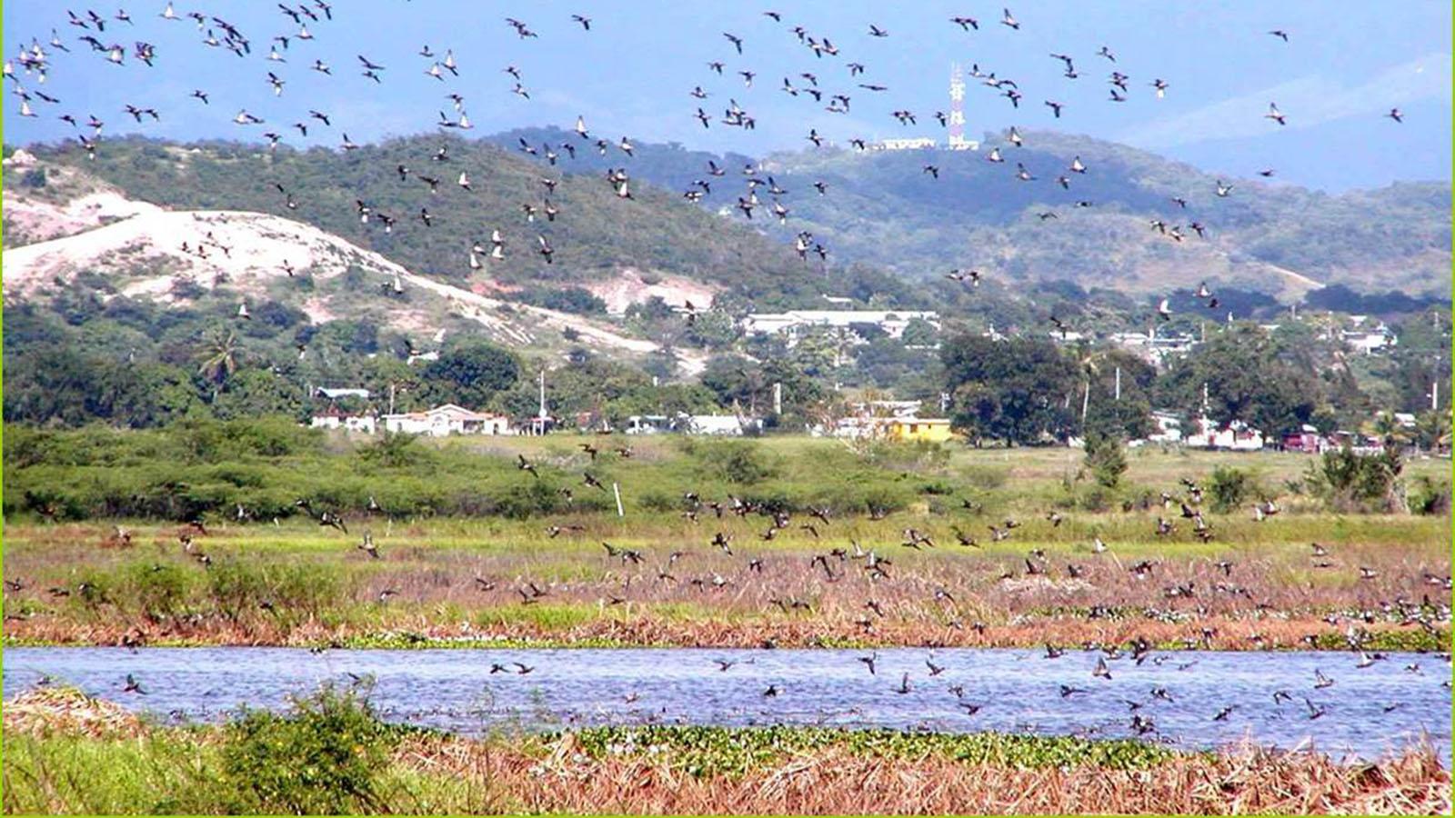 Laguna Cartagena en Lajas. (Archivo / USFWS)