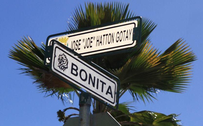 """La calle José """"Joe"""" Hatton Gotay se encuentra en en la urbanización Buena Vista de Ponce."""