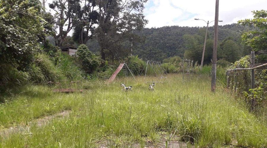 Pastizal en el área recreativa de la comunidad La Carmelita en Ponce. (Suministrada)
