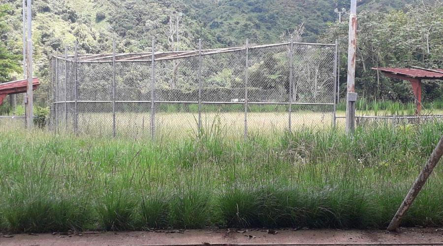 """El parque de pelota de La Carmelita """"prácticamente no se puede utilizar"""", según Zory Méndez. (Suministrada)"""