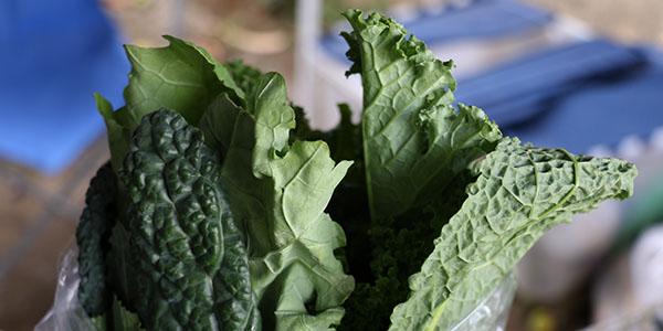 Los agricultores se aseguran de que sus productos mantengan la cantidad de nutrientes correcta.