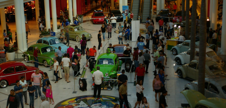 La exhibición Flower Power estará ubicada en el atrio central de Plaza del Caribe.