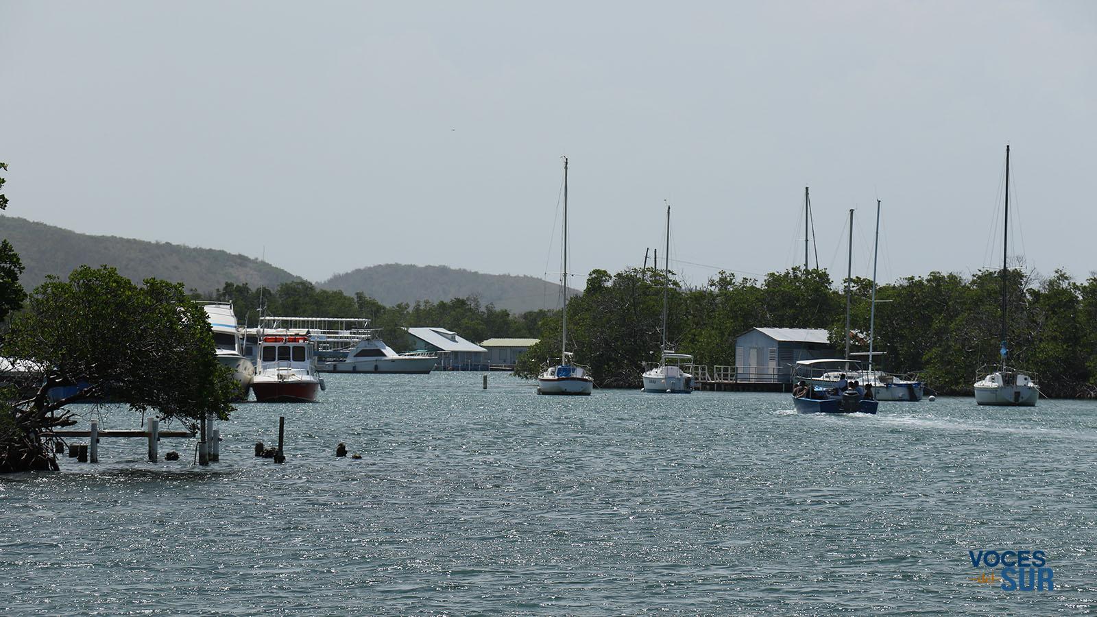 La Reserva Natural La Parguera, en Lajas, es uno de los principales sitios turísticos de Puerto Rico. (Voces del Sur)