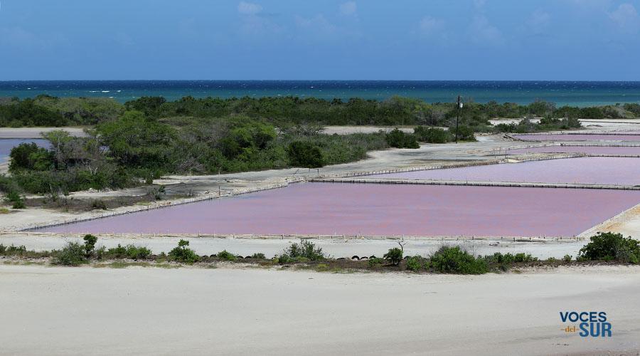 Las Salinas en Cabo Rojo. (Voces del Sur)